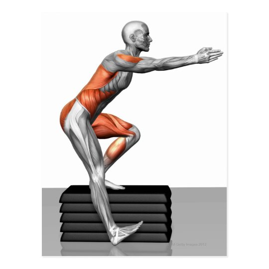 Step-Down Exercises Postcard