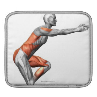 Step-Down Exercises Sleeves For iPads