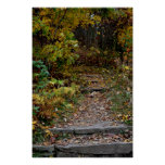 Step to the Appalachian Trail Poster