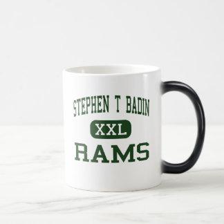Stephen T Badin - espolones - alto - Hamilton Ohio Taza Mágica