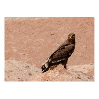 Steppe Eagle, Aquila nipalensis, Steppenadler Large Business Card