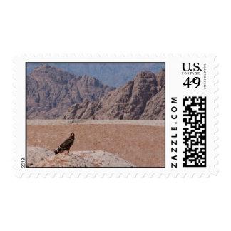 Steppe Eagle, Aquila nipalensis, Steppenadler Postage