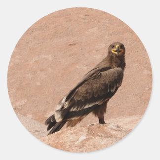Steppe Eagle, Aquila nipalensis, Steppenadler Round Stickers