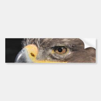 Steppe Eagle Bumper Sticker