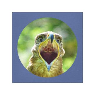 Steppe Eagle Head 001 01rd, screaming Canvas Print