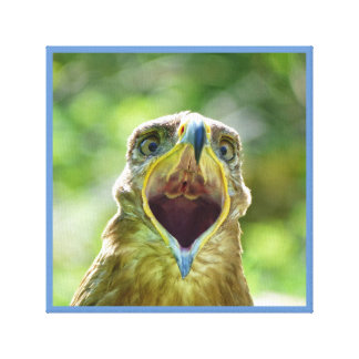 Steppe Eagle Head 001 07.10, screaming Canvas Print