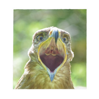 Steppe Eagle Head 001 2.1 Notepad