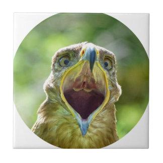 Steppe Eagle Head 004 01rd, screaming Ceramic Tile