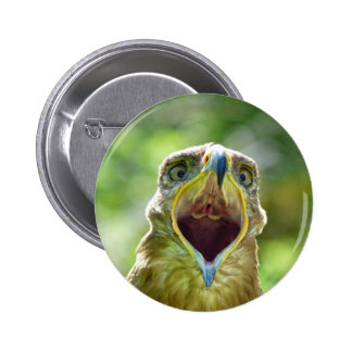 Steppe Eagle Head 004 01rd, screaming Pinback Button