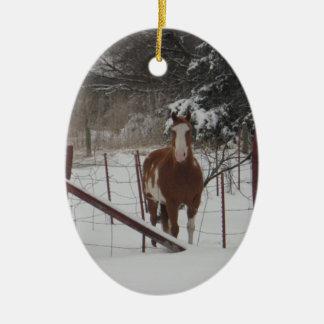 Stepper In The Snow Ornament