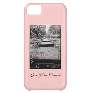 Stepping Stones iPhone 5C Cases