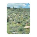 Stepping Stones Decorative Western Desert Magnet