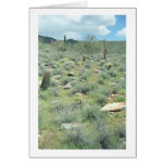 Stepping Stones Desert Greeting Card or Note Card