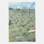 Stepping Stones Desert Photo Kitchen Towels