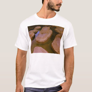Stepping Stones T-Shirt