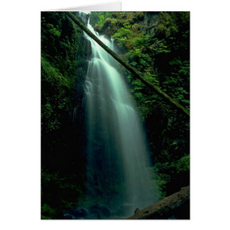 Steps And Water Greeting Card