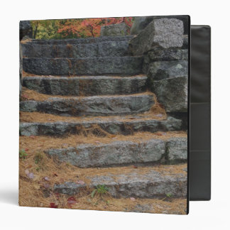 Steps covered in pine needles, White Mountain 3 Ring Binder