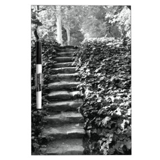 Steps in the Nature Dry Erase White Board