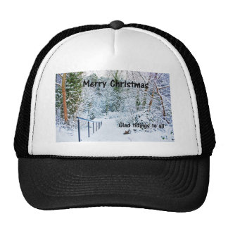Steps in the Snow Mesh Hats