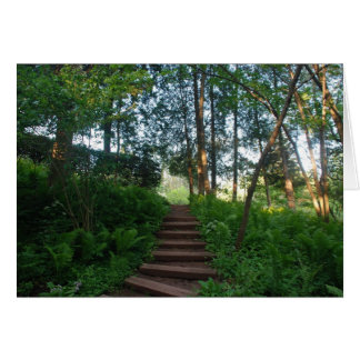 Steps on a Nature Walk Card