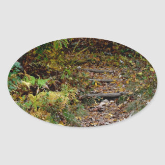 Steps to the Applaachian Trail Oval Stickers