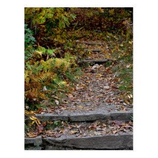 Steps to the Applaachian Trail Postcard