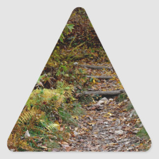 Steps to the Applaachian Trail Triangle Stickers