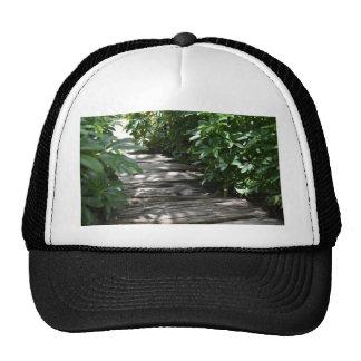 Steps Trucker Hat