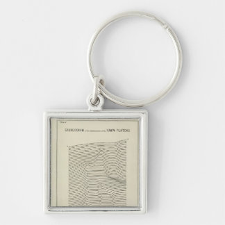 Stereogram Uinta Mountains Silver-Colored Square Keychain