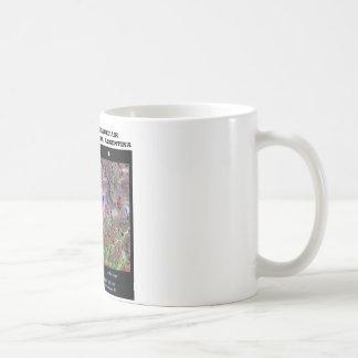Stereoscopic Image Pair Nrthn Patagonia Argentina Coffee Mug