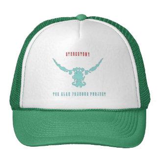Stereotomy CAP