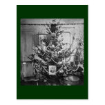 Stereoview Christmas Tree Victorian 1800s Vintage Post Card
