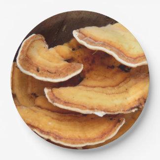Stereum Hirsutum Fungi Paper Plates