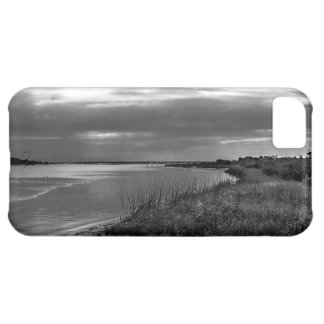 Sterling Silver Landscape, Florida Cover For iPhone 5C