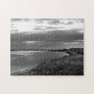 Sterling Silver Landscape, Florida Puzzle
