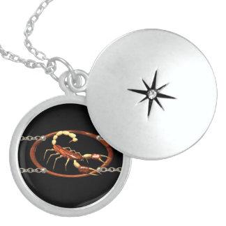 Sterling sliver scorpion  locket by valxart