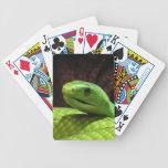 stern Green Mamba snake Bicycle Card Deck