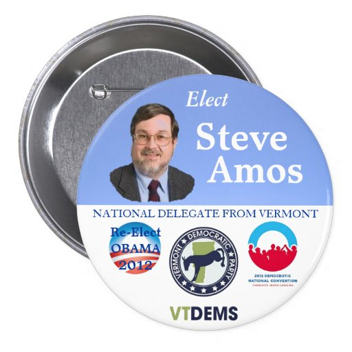 Steve Amos for Vermont National Delegate 2012 poli 3 Inch Round Button