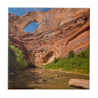 Stevens Arch - Escalante River - Utah Tile