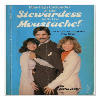 STEWARDESS WITH THE MOUSTACHE POSTER