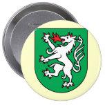 steyr, Austria Pin