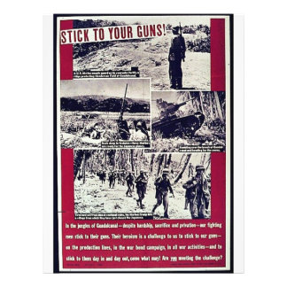 Stick To Your Guns Full Color Flyer