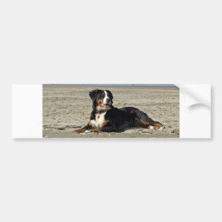 Sticke hermoso del parachoque de la foto del perro pegatina para auto