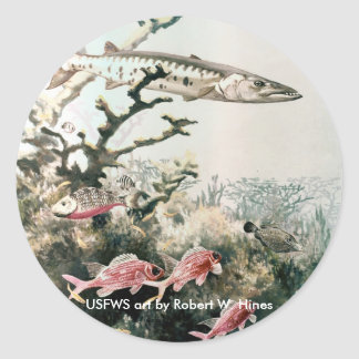 Sticker / Barracuda and Reef Fishes