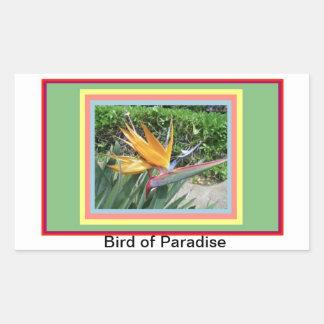 Sticker-Bird of Paradise Rectangular Sticker