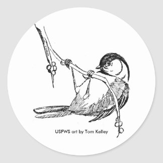 Sticker / Black-capped Chickadee