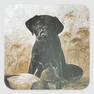 STICKER Black Lab labradors retrievers upland dog