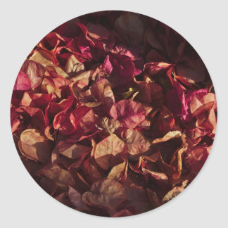 Sticker: Dead Bougainvillea Flowers Classic Round Sticker
