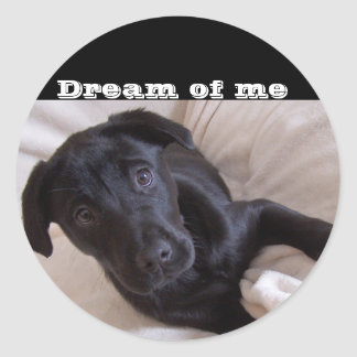 Sticker, Dream of me Classic Round Sticker