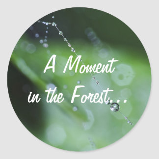 Sticker: Moment in the Forest Classic Round Sticker